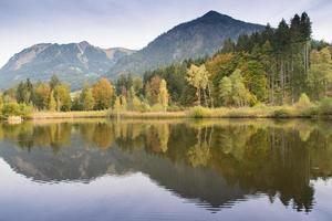 estanque de pantano en las montañas