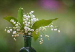 Lilies of valley photo
