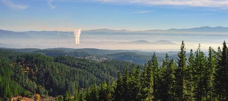 chimeneas y bosque photo