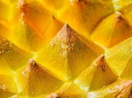 The rough skin of durian, like golden pyramid forest