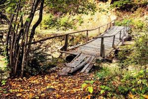 Wooden bridge over stream photo