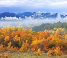 escena de otoño con montañas en el fondo