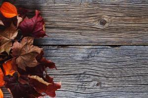 Fall leaves on rustic wood table
