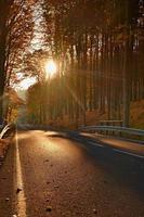 Carretera de asfalto oscuro con línea, bosque de otoño con hayas foto