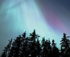 auroras boreales de alaska foto
