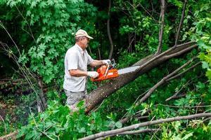 El leñador usa su motosierra para cortar el árbol foto
