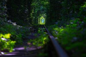 tunnel of Love photo