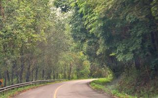 cámaras que usamos viajar en la carretera (paisaje)