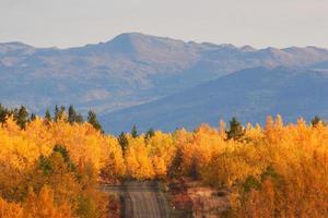 Árboles de colores otoñales a lo largo de la carretera en British Columbia