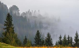 niebla y nube paisaje de valle de montaña