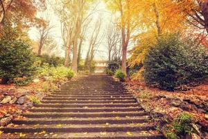 Staircase leading to a mansion with golden trees