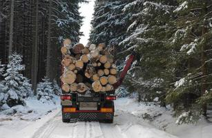 Truck with log in road in forest in winter photo