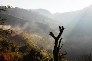 Fog on the mountain photo
