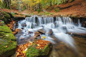 Carpathian Mountains. The mountain river in the autumn forest photo