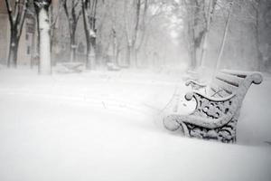 banken in het park bedekt met sneeuw