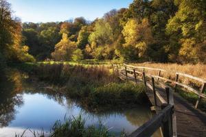 Stunning vibrant Autumn landscape of footbridge over lake in for photo