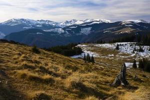 zona alpina, montañas retezat