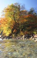 hojas de colores en barranco matsukawa foto