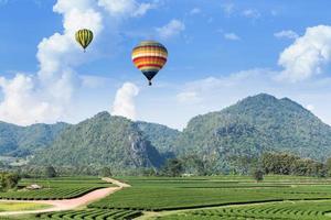 Hot air balloon over the mountain and tea plantation photo