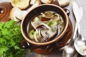 Mushroom soup photo