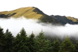 high mountain scenery with tree and clouds