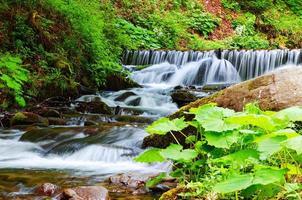 pequeña cascada, un arroyo de montaña. foto