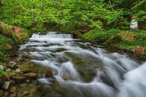Carpathian Mountains. The mountain river near the waterfall Shipot photo