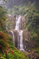 Waterfall in deep forest near Nuwara Eliya in Sri Lanka.