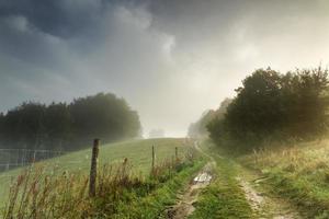 estrada de conto de fadas da manhã do nevoeiro do outono serpenteando pela floresta e pelo campo