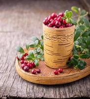 Fresh forest berries and lingonberry twigs in cup of birch
