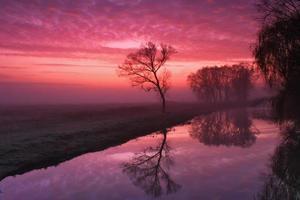 amanecer brumoso en el río foto