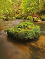 rio da montanha com grandes pedregulhos musgosos no fluxo.