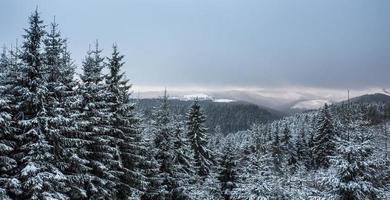kahler asten winter landscape in germany
