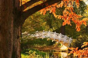 jardines ingleses del puente blanco de woerlitz foto