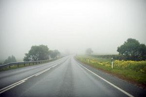 Empty foggy country road at summer.