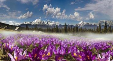 chaînes de montagnes de l'Ukraine