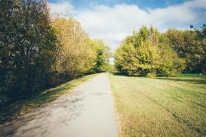 paisaje de campo de color otoñal. aspecto retro de película granulada.