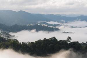 niebla de la manana foto