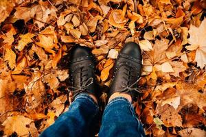 Women's legs in dark shoes standing on autumn fall leaves photo
