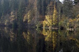 autumnal scene photo