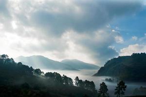 montaña con paisaje de niebla, doi ang khang, tailandia
