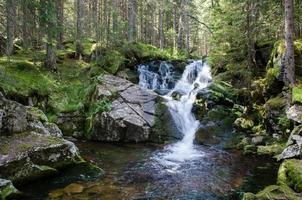 Retezat National Park, Romania photo