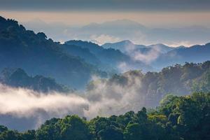 niebla de la mañana en la cordillera tropical, Tailandia