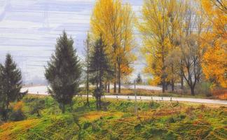 road on sunny autumn day pass