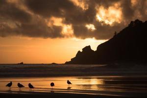 Atardecer en la playa de arena corta en la costa de Oregon foto