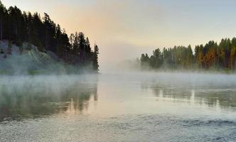 fog over the river in Hayden Valley of Yellowstone photo