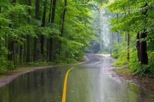 Rural Road on a Rainy Day photo
