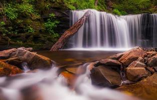 bela cachoeira no parque estadual de rickett's glen, na Pensilvânia.
