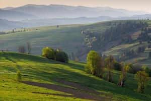 The misty hills of the Carpathian mountains at sunrise