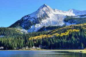 yellow and green aspen and snow covered mountains photo